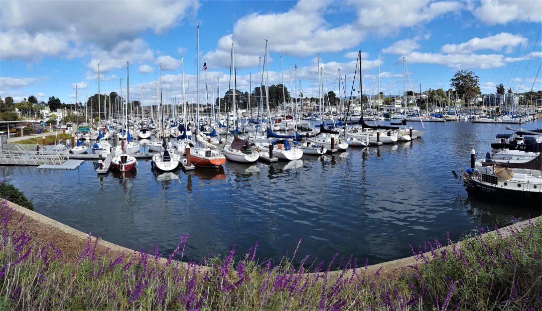 Santa Cruz barci